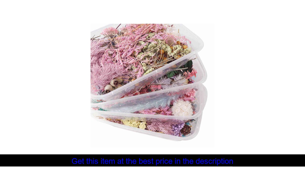 1 Box Colorful Real Dried Flower Plant For Aromatherapy Candle Light